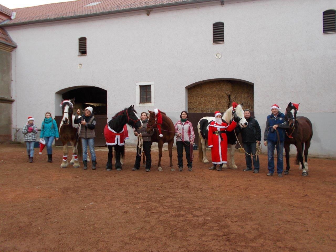 2018-12-24_Kaufbach Pferde.JPG