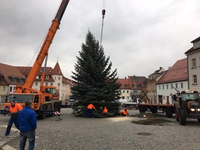 2018_Weihnachtsbaumstellen.JPG